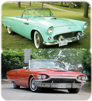 Ford T-Bird 1955-1966