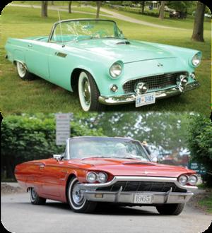 Ford T-Bird 1955-1966